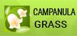 Tranh Đính Đá ABC Campanula
